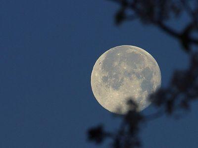 winter-moon-at-night.jpg